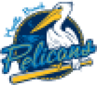 Myrtle Beach Pelicans primary on dark